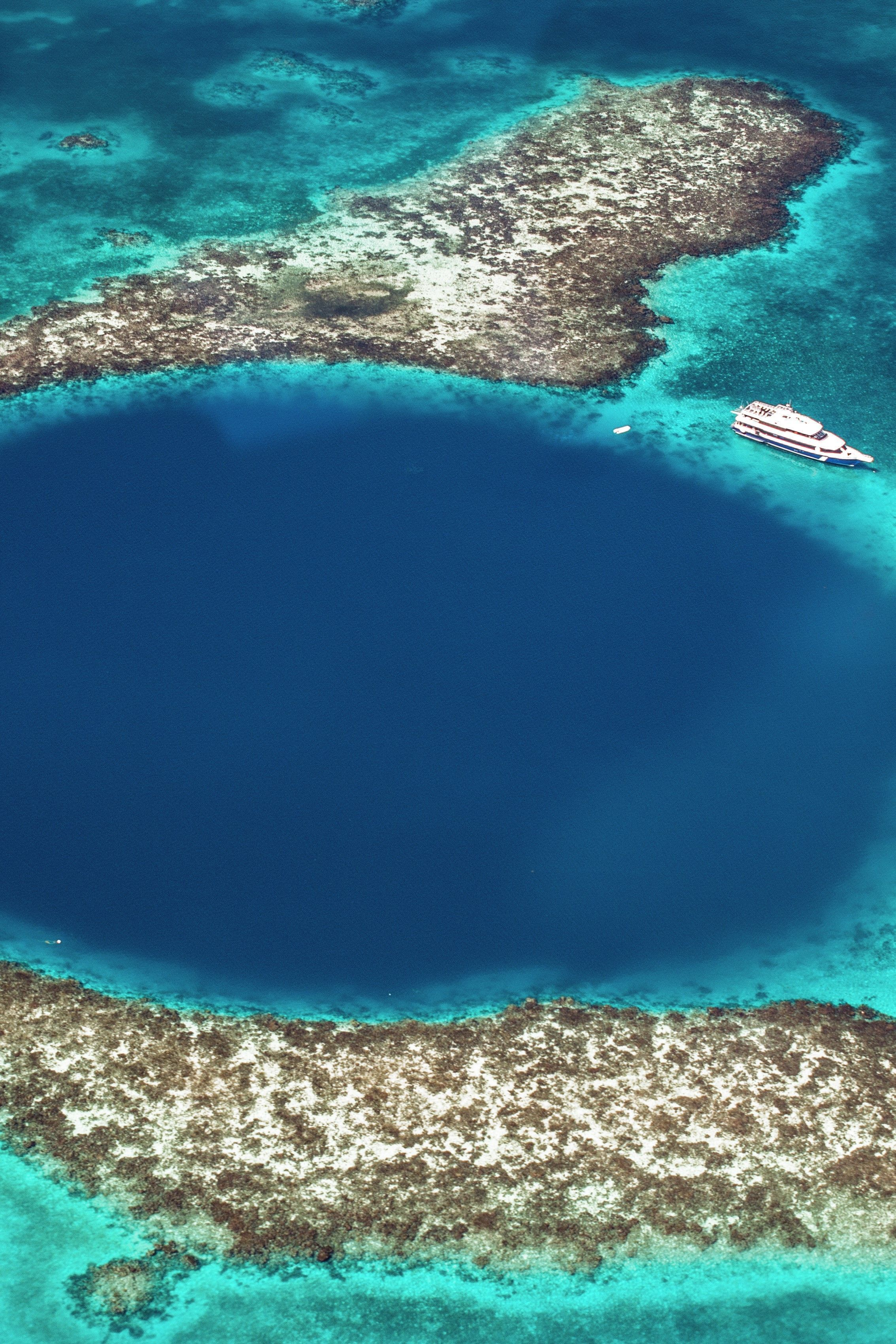 Great Blue Hole - Belize  😨       #spearfishing #freedive