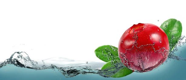 ripe berry cranberries on a background of splashing water