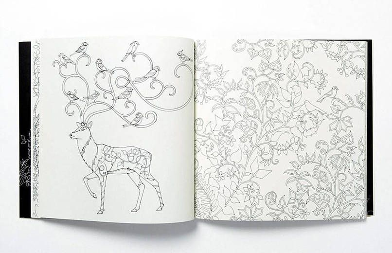 Talented U Illustrator Johanna Basford Has Created A Series Of Enchanting Coloring Books For Adults