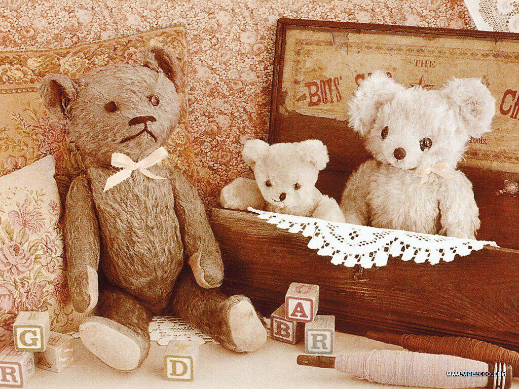Pin by Allyson Chong on Doll Teddy Bear ʕ⁎̯͡⁎ʔ༄༺ෆ Teddy
