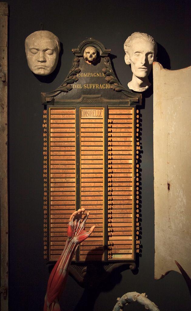 Anatomical antiques