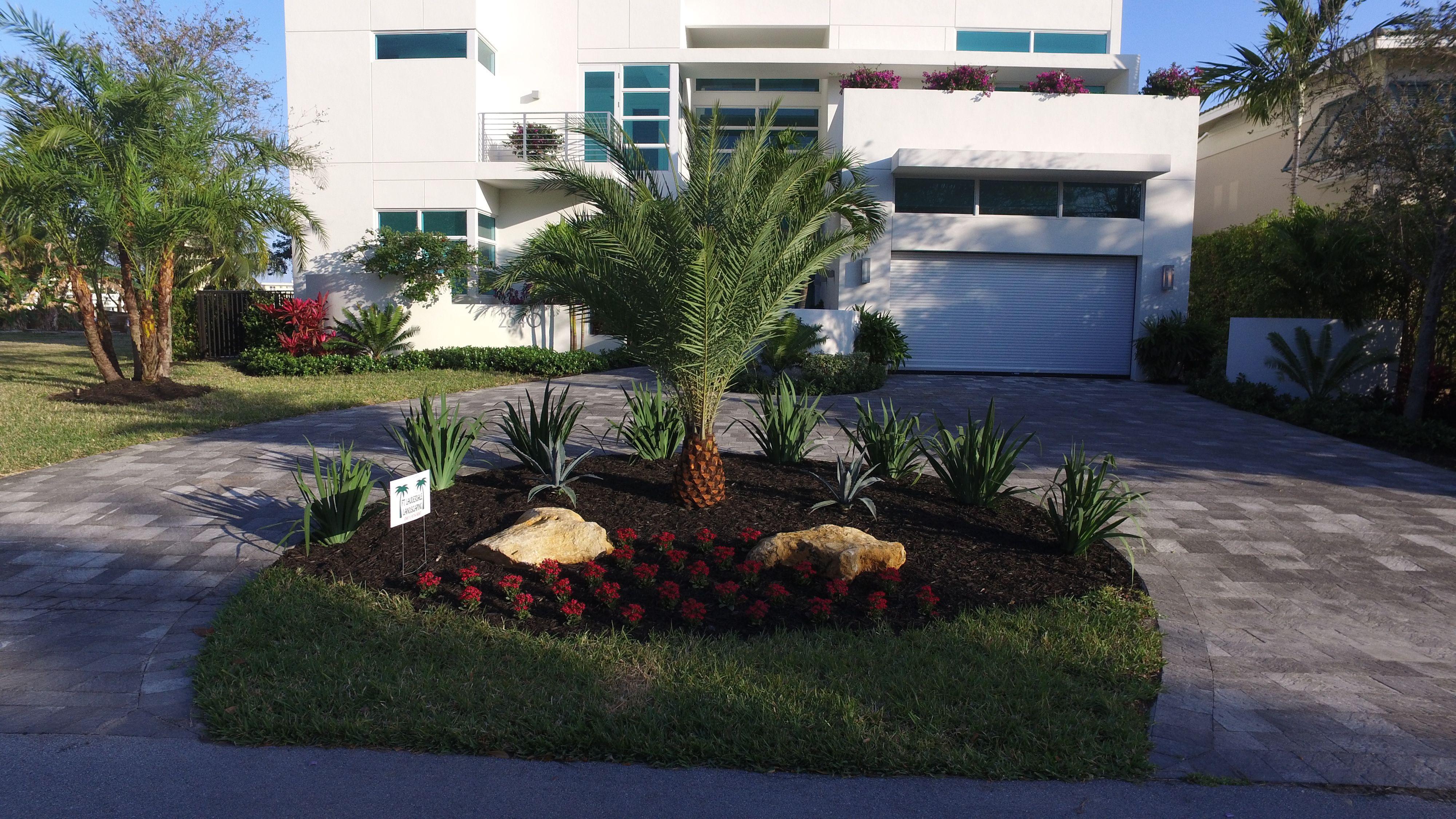 Fortlauderdalelandscape Com Jobs Landscape Landscaping Landscaper Specimentrees Landscapemyhouse Cleanups Cl House Landscape Specimen Trees Outdoor Pool