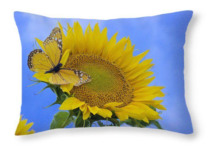 Butterfly Sunflower Throw Pillow by Becca Buecher