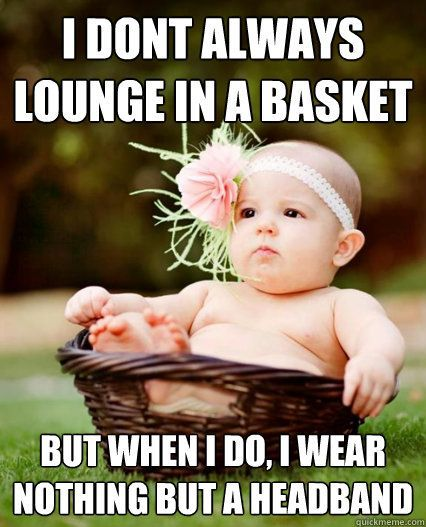 Basket Baby - i dont always lounge in a   basket but when i do i wear nothing but a headband. // so glad someone finally   made a meme out of crazy newborn photography. P.S. meaning, I think putting a   naked baby in a basket and putting a giant feathered head on is completely   silly.