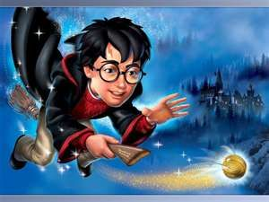Quidditch...the ONLY thing I like about Harry Potter