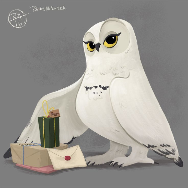 // Hedwige remet à Harry des cadeaux pour le Harry Potter Design Challenge de cette semaine :) - #delivering #design #harry #hedwig #potter