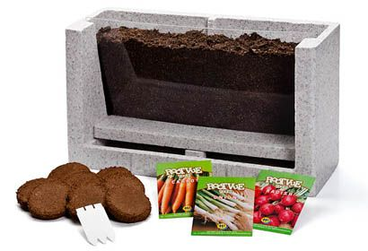 underground garden lab - lets kids watch as the roots and plants grow.