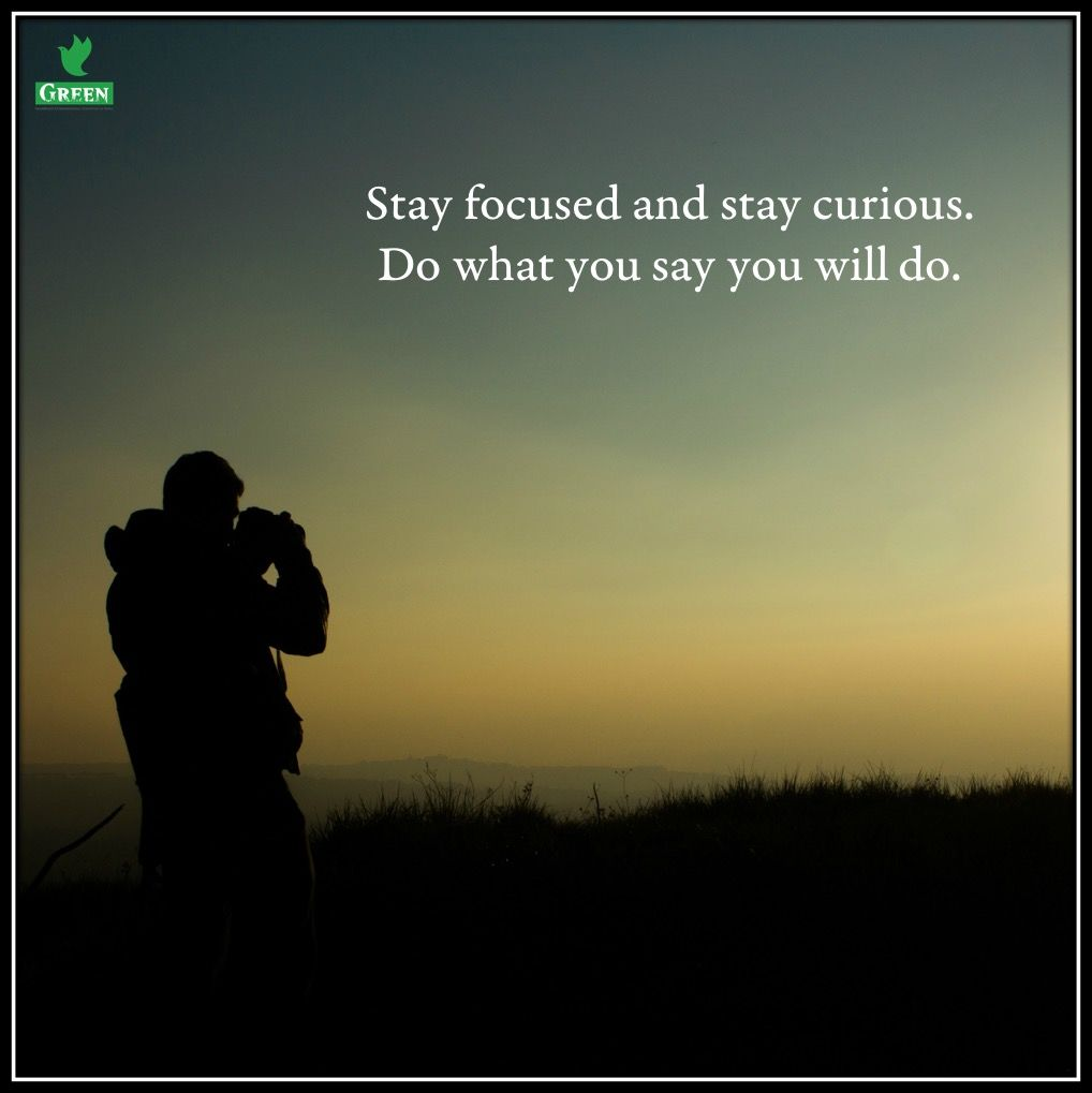 Stay Focused Quotes Stay Focused Go After Your Dreams And Keep Moving Toward Your