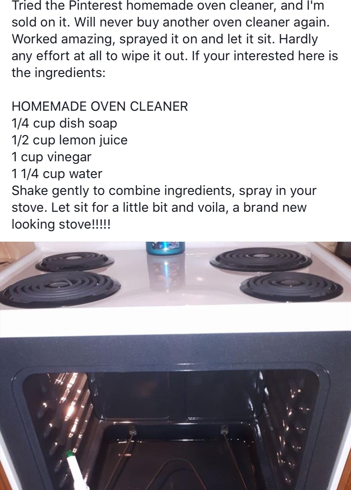 Homemade oven cleaner (With images) Homemade oven