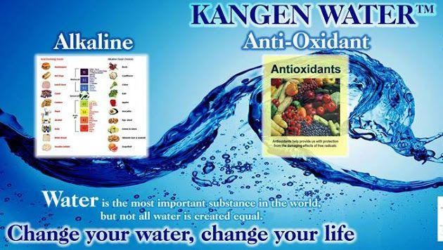 Heather W Strange The Kangen Water Lady Google Kangen Water Kangen Antioxidants Water