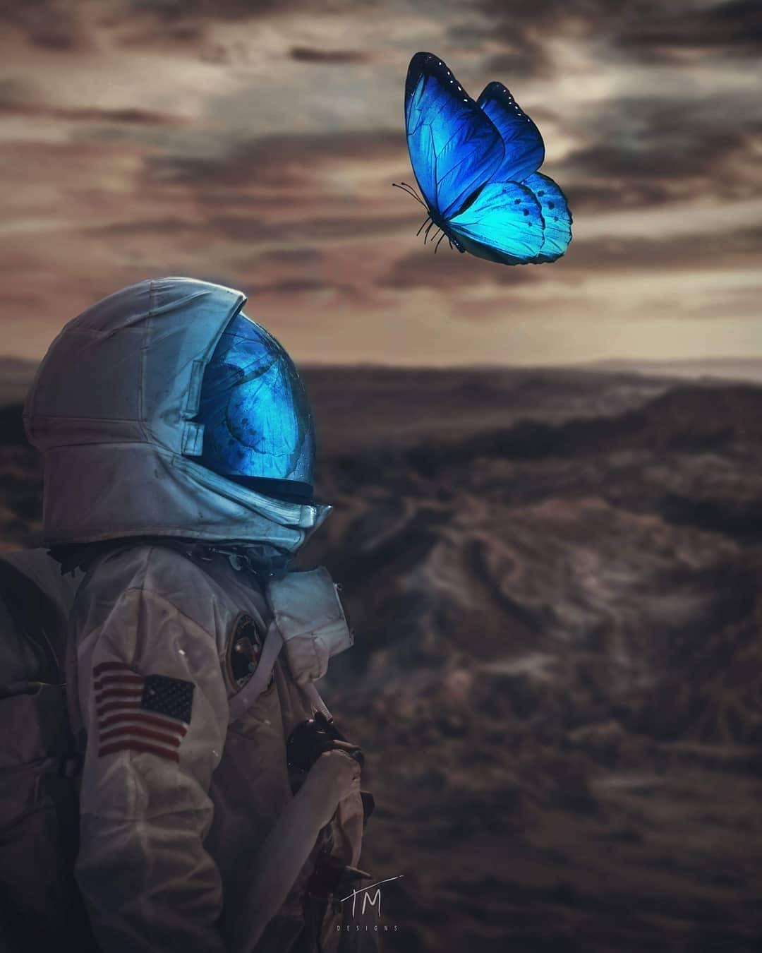 A Social Butterfly Ps Glow Piece By Tmdesigns Astronaut Art Art Space Art