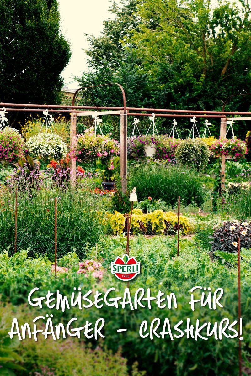 Gemusegarten Anlegen Tipps Vom Profi Fur Deine Erfolgreiche Gemuseernte Gemusebeet F Vegetable Garden For Beginners Vegetable Harvest Fall Garden Vegetables