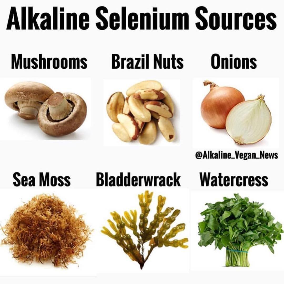 "Alkaline Vegan Shop on Instagram ""To purchase sea moss"