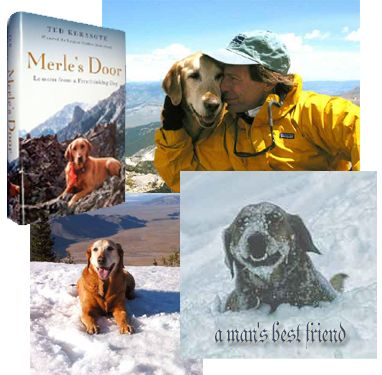 Merle\u0027s Door by Ted Karasote... such a great book for dog lovers. Also has great ideas for developing a well-trained dog & Merle\u0027s Door by Ted Karasote... such a great book for dog lovers ...