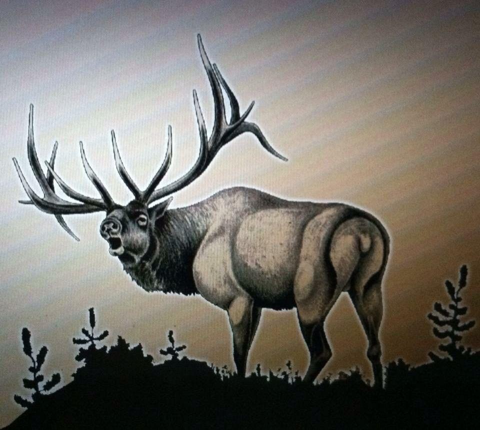 Elk Tattoo, Deer