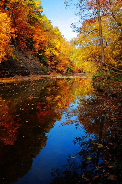 Black River At Bur Oak Autumn Scenery Nature Scenes Beautiful Sites