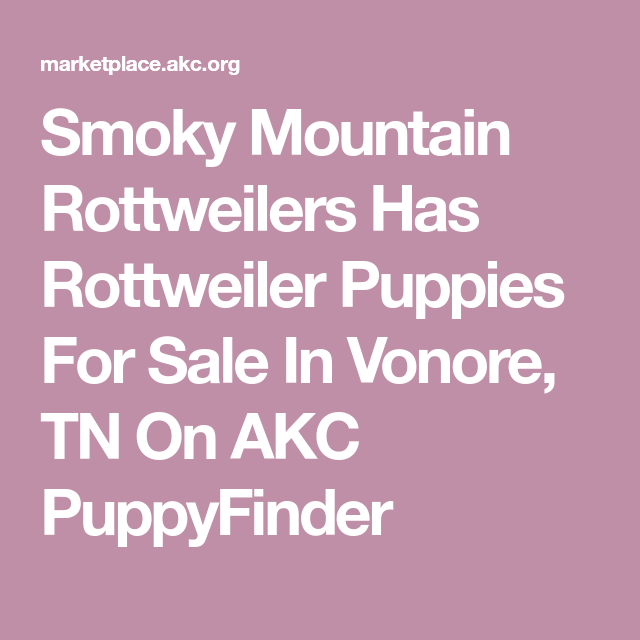 Smoky Mountain Rottweilers Has Rottweiler Puppies For Sale In