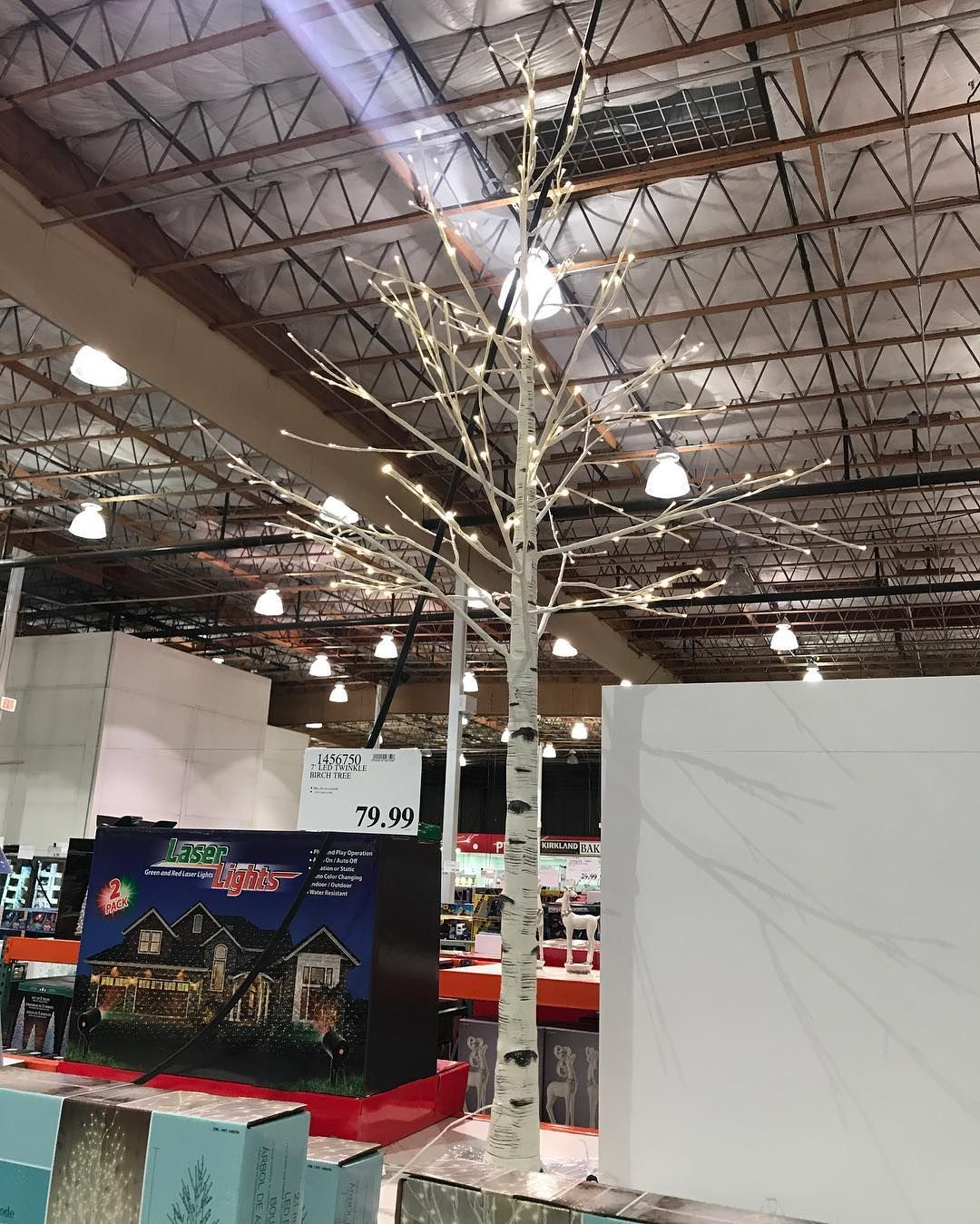 Costco Twinkling Christmas Tree: Beautiful 7' #led Twinkle #birchtree Only $79.99