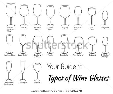 Mega Collection Of Hand Drawn Wine Glasses. Experts Guide To Types Of Wine  Glasses.