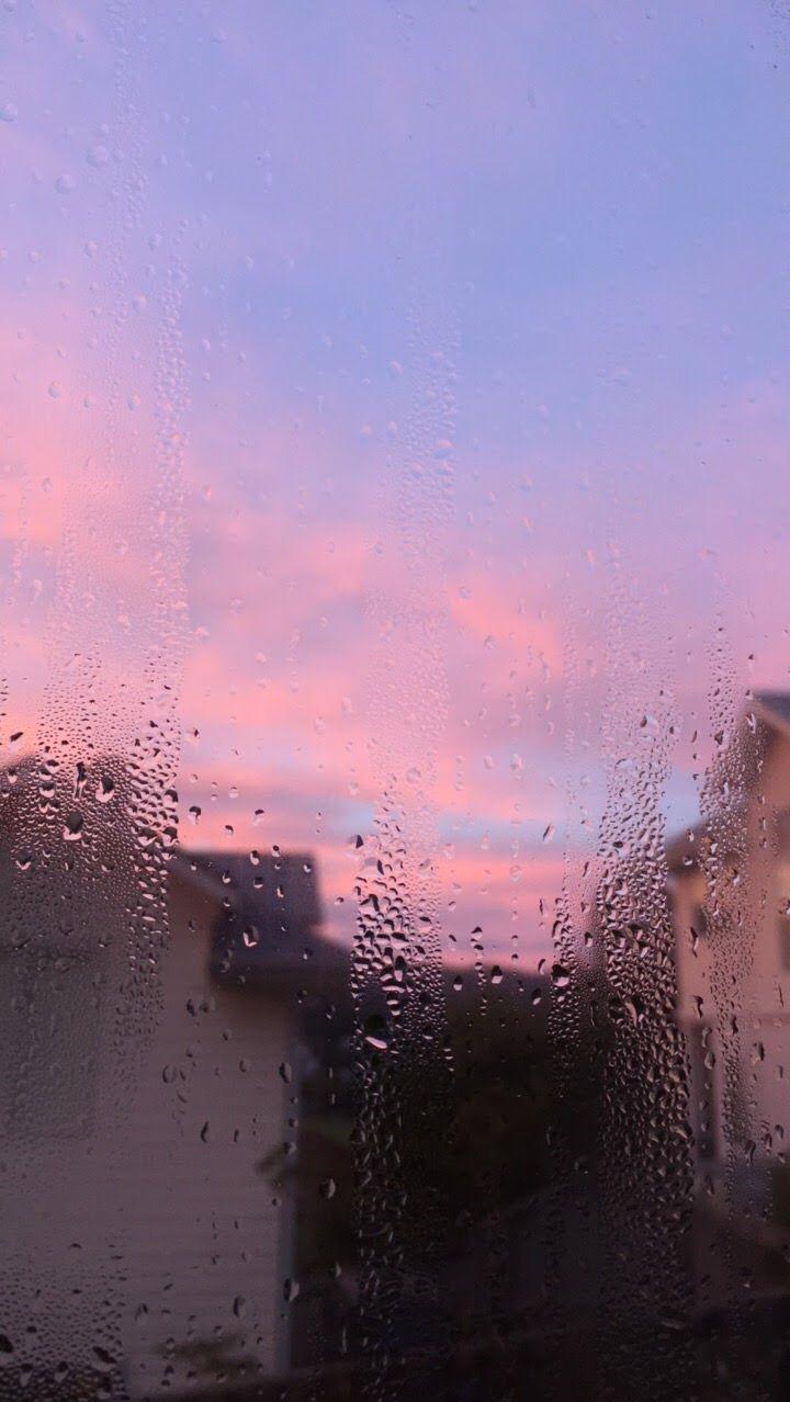 violet morning 3.3 Papel de parede paisagens, Fotografia