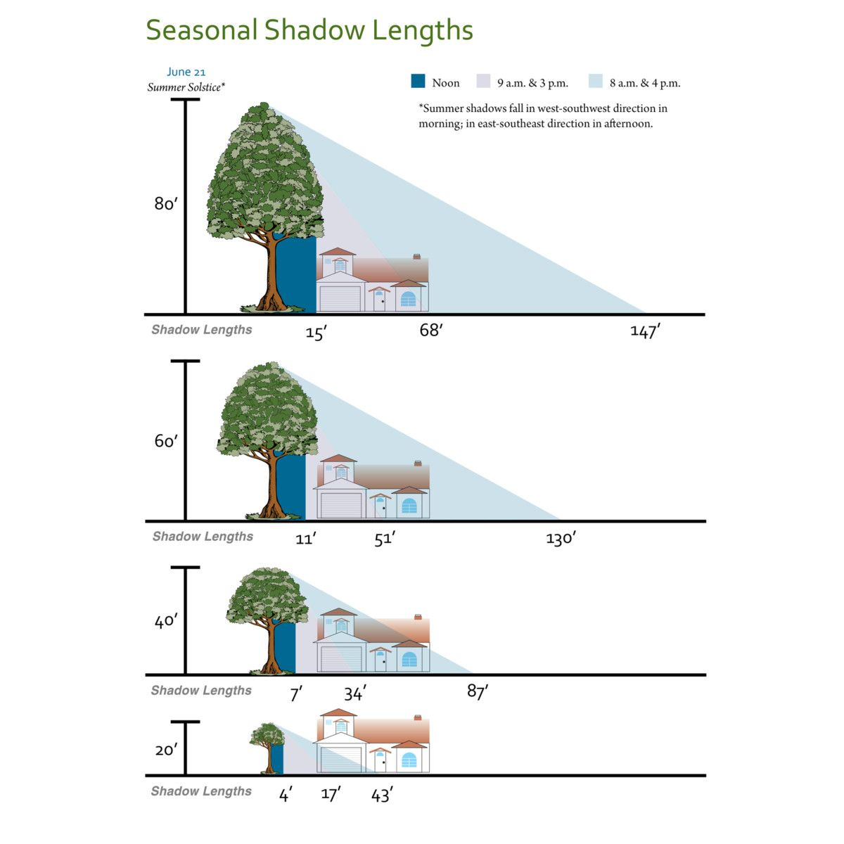 Tid Shade Tree Rebate Program