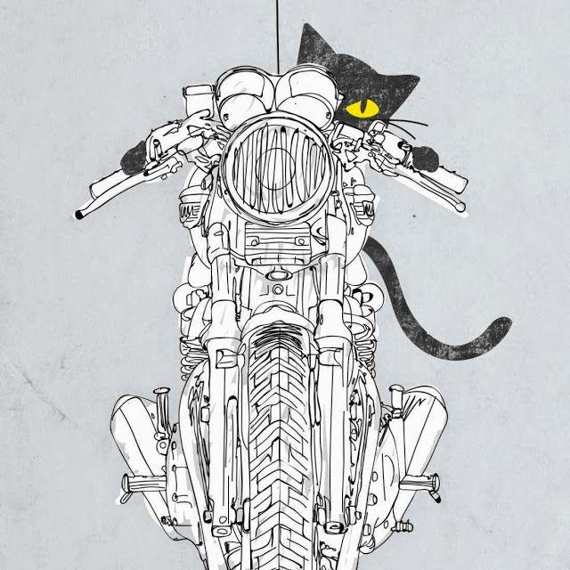 Кот на мотоцикле картинка