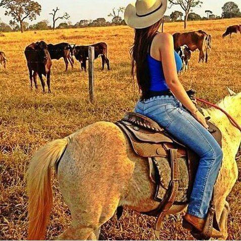 Campo Fazenda Fartura Country Brutosebrutas Brutos Brutas Cavalo Cavalos Horse Bruto