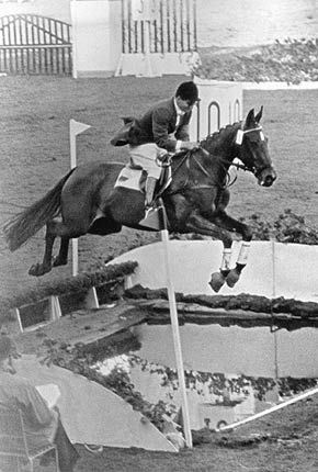 This is Halla (May 16, 1945–May 19, 1979) a mix of French Trotter and Am. Standardbred. She was ridden by Hans Günter Winkler and was the only horse ever to win three Olympic Gold medals in the sport of show jumping