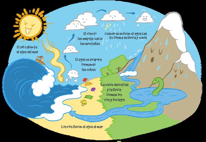 Resultado De Imagen Para Infografia Del Ciclo Del Agua Ciclo Del Agua Ciclo Hidrologico Infografia