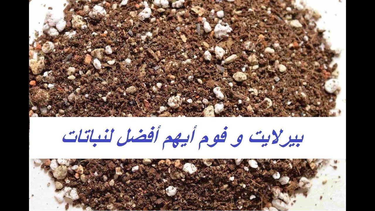أفضل تربة زراعية بيرلايت والبديل له Perlite حلقة 367 How To Dry Basil Herbs Dried