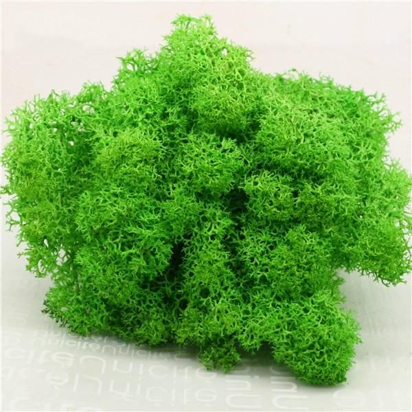 Photo of High quality artificial green plant immortal fake flower Moss grass home living room decorative wall DIY flower mini accessories Artificial Plants  – A