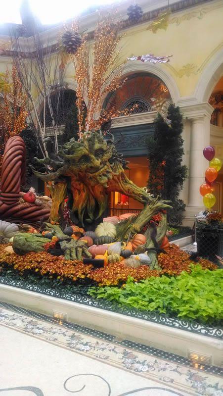fef32f1aca524e611281e7621f0dba10 - Bellagio Conservatory & Botanical Gardens Las Vegas