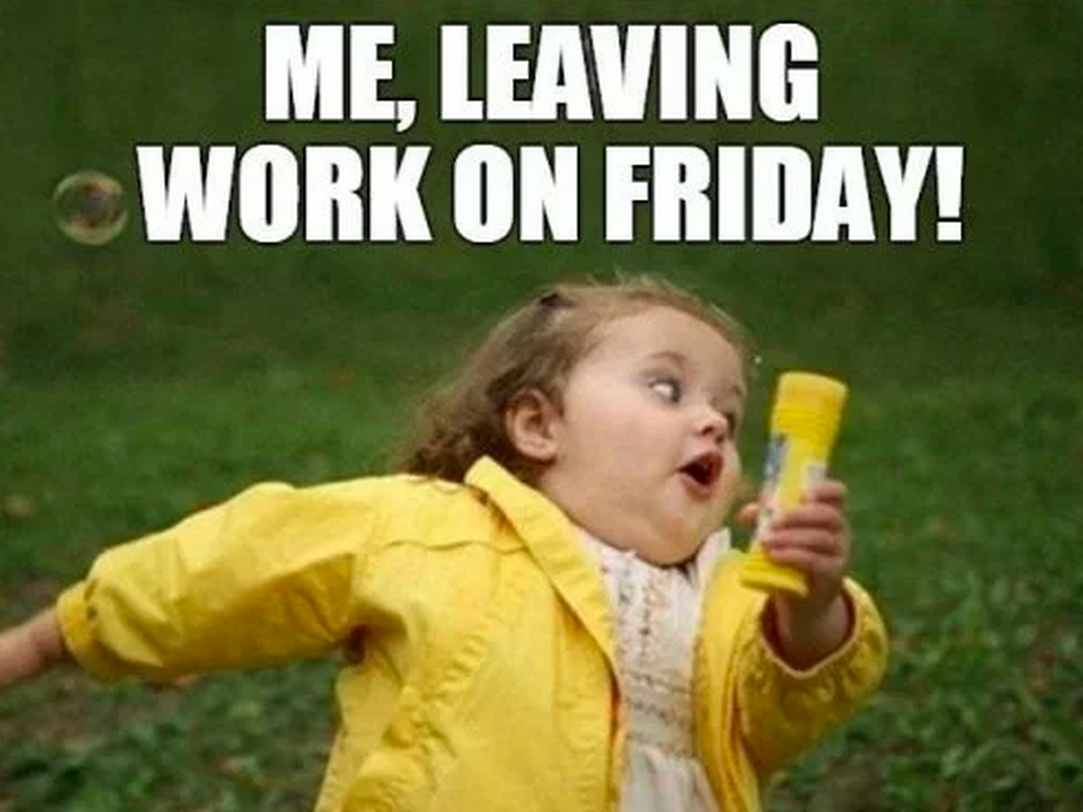 It's Friday! The weekend starts here! in 2020 Funny