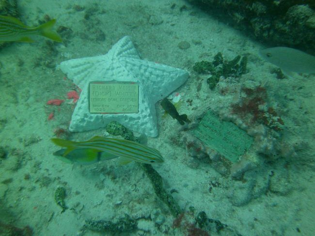 This Underwater Mausoleum Is Providing Loved Ones With A Beautiful Resting Place