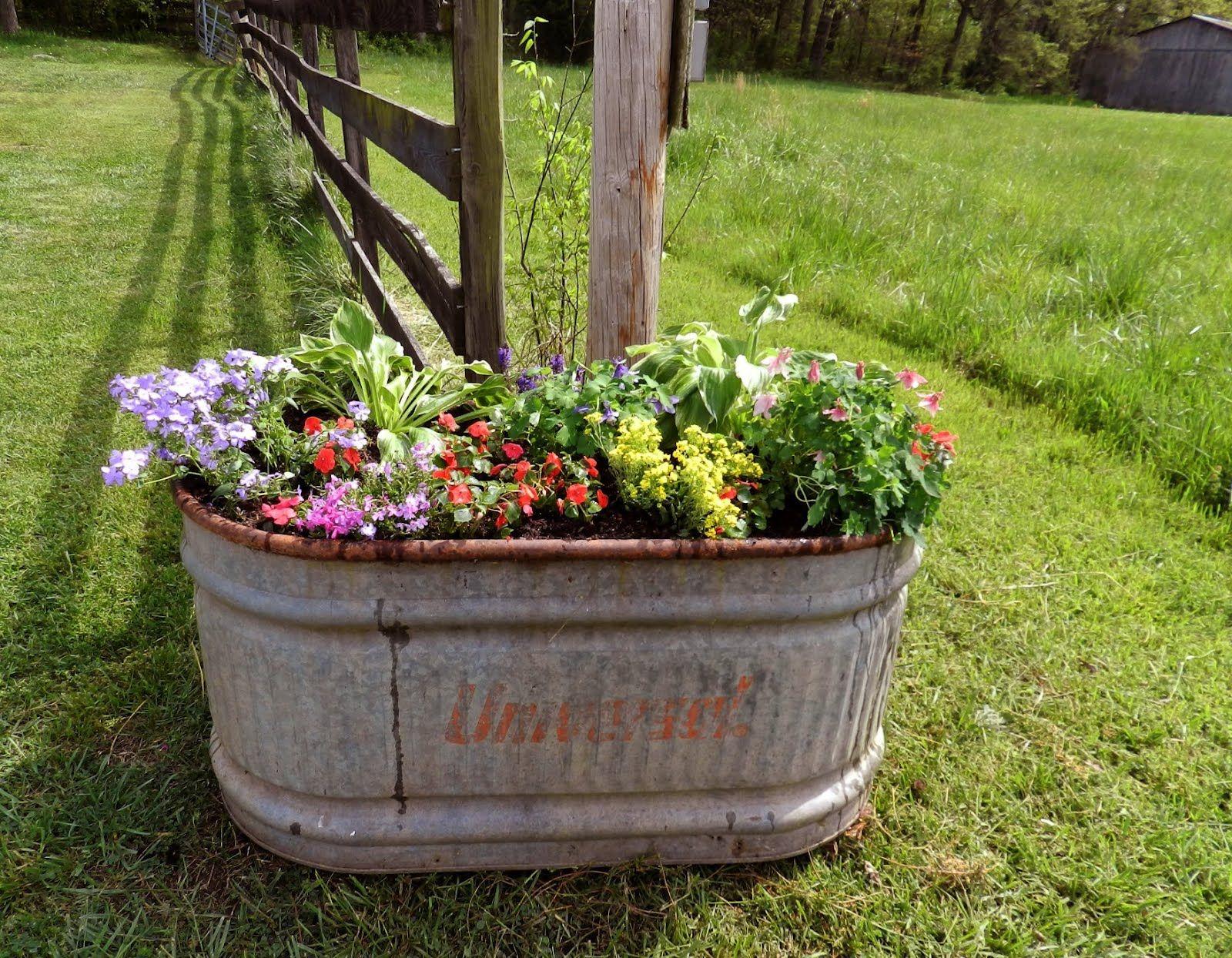 Garden Ideas · The Old Water Trough ...