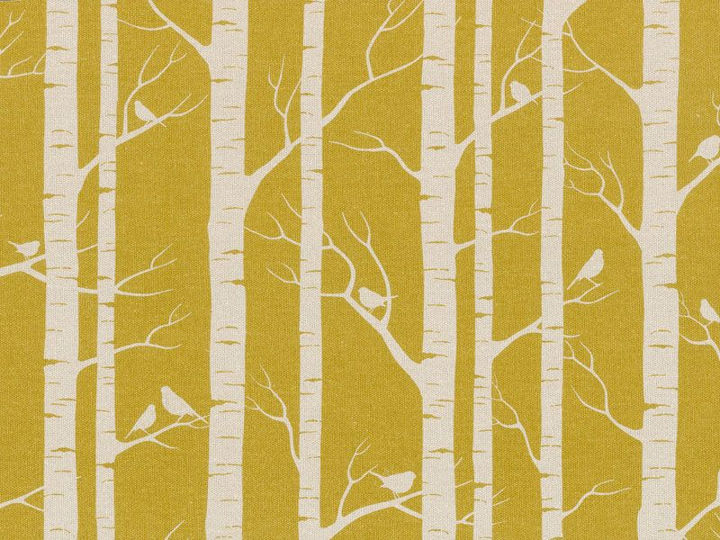 Wall Paper One Wall Birches And Bir S On Mustard
