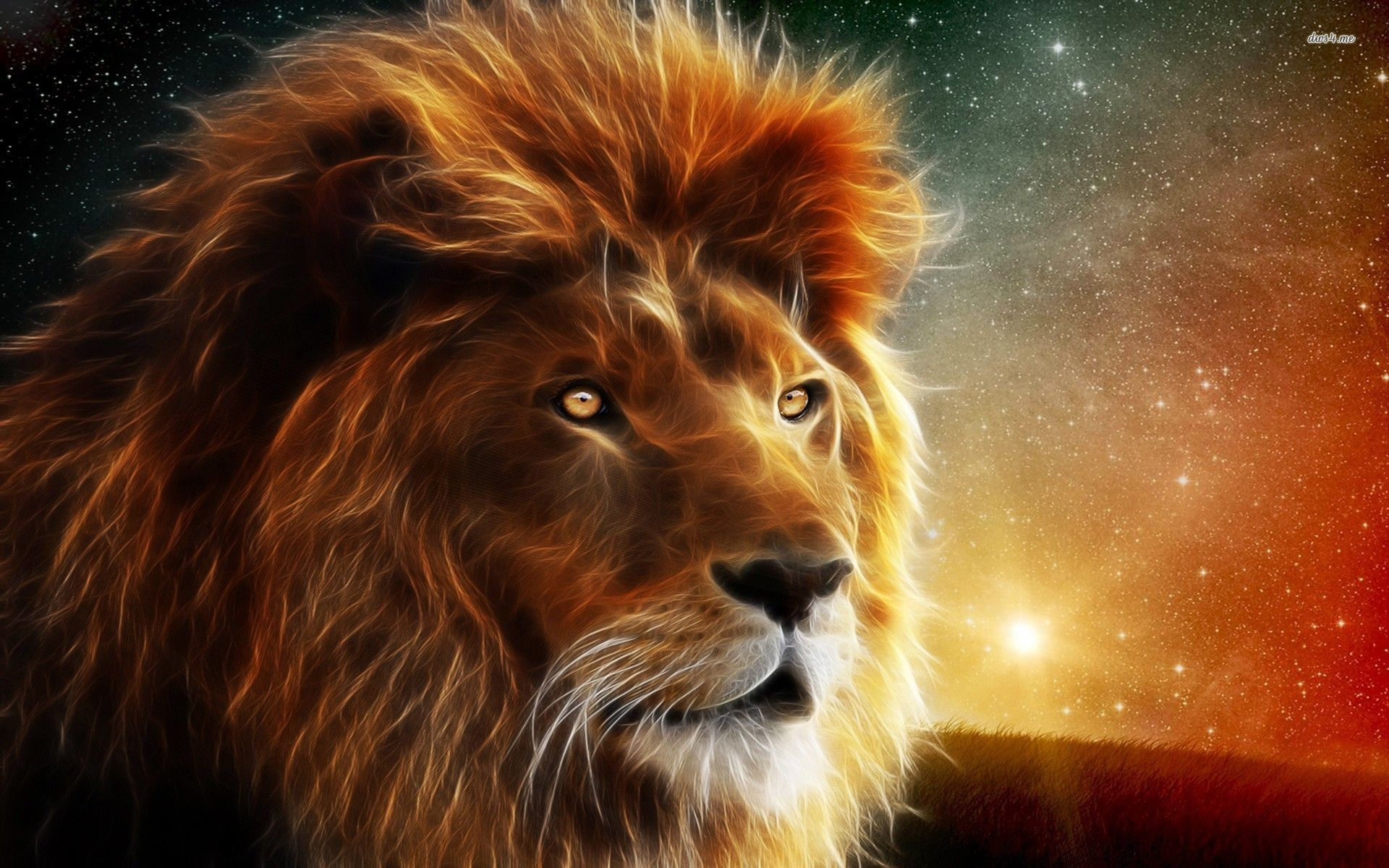 Res 1920x1200 Cool High Definition Lion Wallpapers Download For Free A M F Wallpapers In 2020 Lion Hd Wallpaper Lions Photos Lion Wallpaper