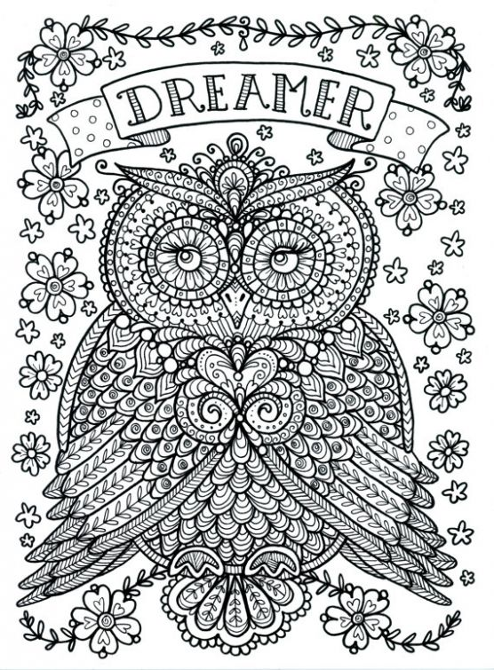 Dreamer Owl By Chubby Mermaid