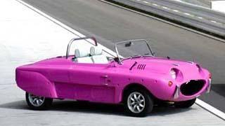 Pink Tottini