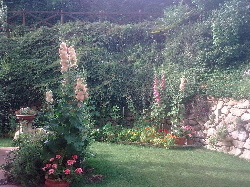 Il mio giardino fiorito _ foto: Carlotta Mantovani