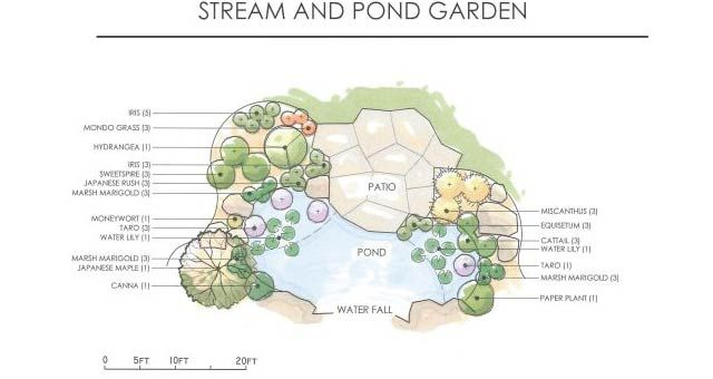 Pond Shapes And Design Buscar Con Google Tasarim