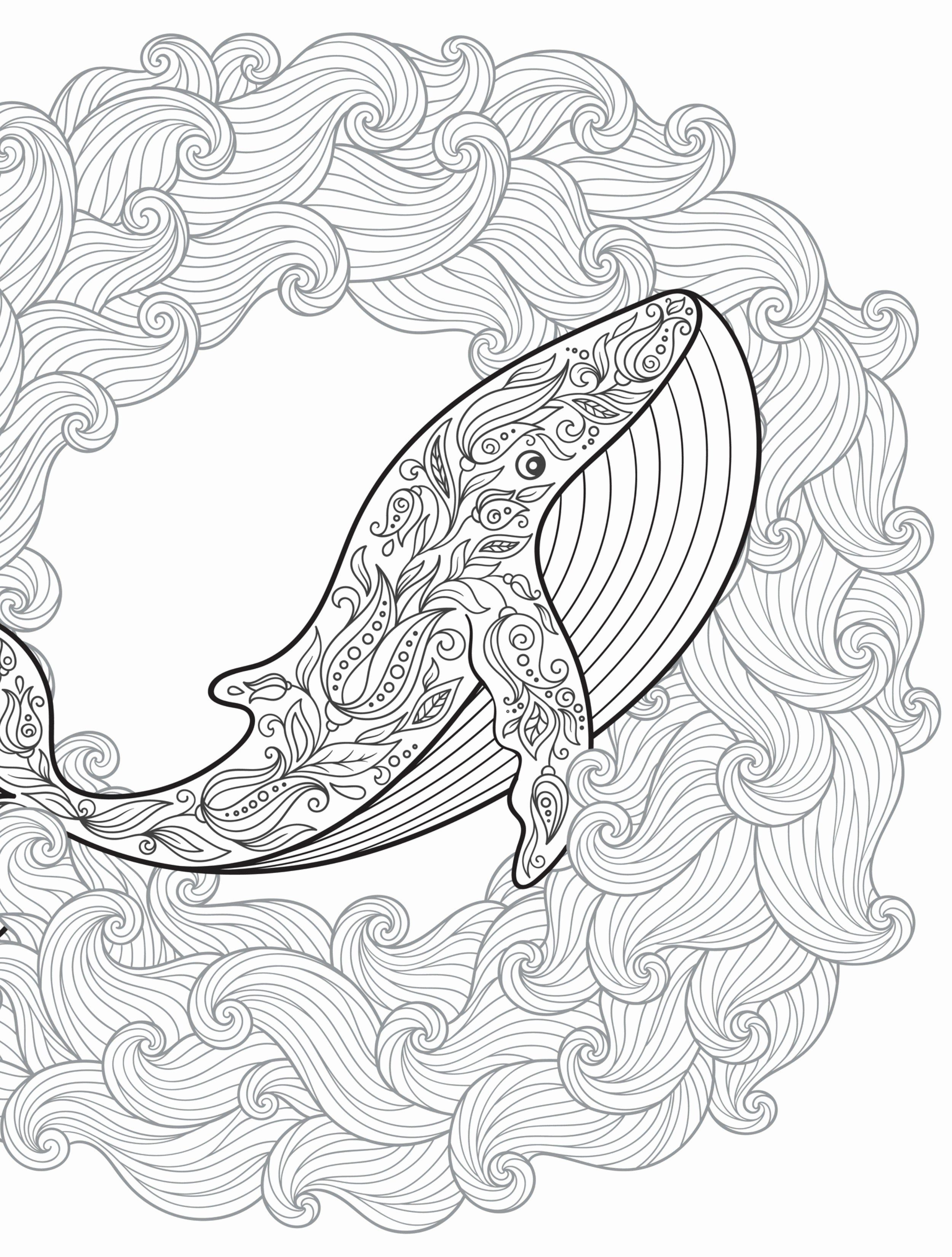 Water Drop Coloring Pages Best Of Pin On Adult Coloring Buku