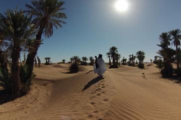 Private Tour: 3-Day Desert Tour from Fez to Marrakech, Fez. Viator (ビアター) 提供のFez, MoroccoのPrivate Tour: 3-Day Desert Tour from Fez to Marrakechを予約。