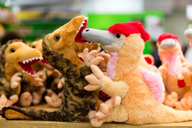 かわいい 目玉 恐竜も人気 恐竜博来場者50万人超え 朝日新聞デジタル 恐竜 ぬいぐるみ かわいい