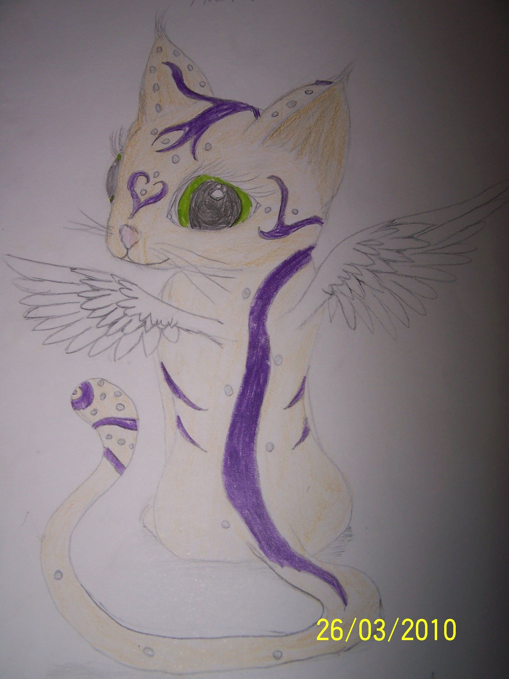 the ultimate cat care guide wings drawing kitten care and cat