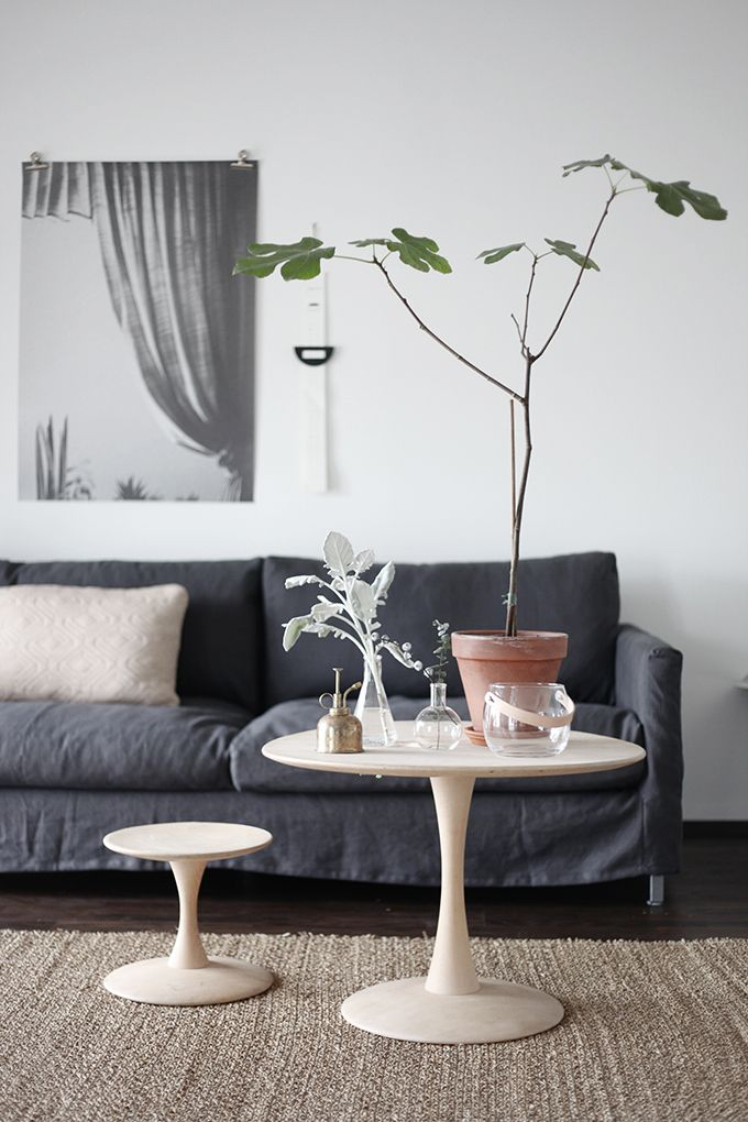 plant on the sofa table  beautiful living rooms