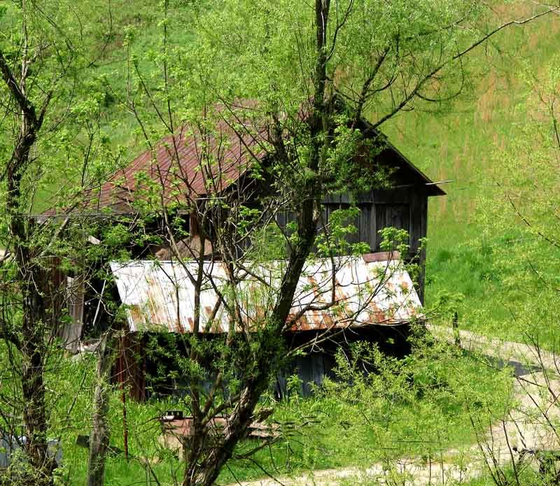 Old West Virginia Cabin. Photo By N Toothman