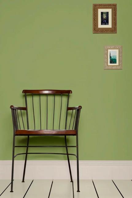 Farrow Ball Olive En 2020 Pared Color Verde Decoración Del Dormitorio Colores Paredes