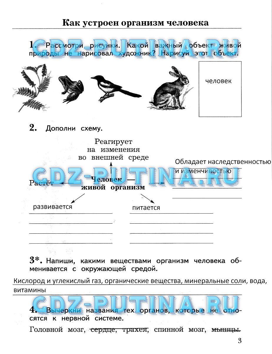 Решебник Окружающий Мир 3 Класс Виноградова Калинова