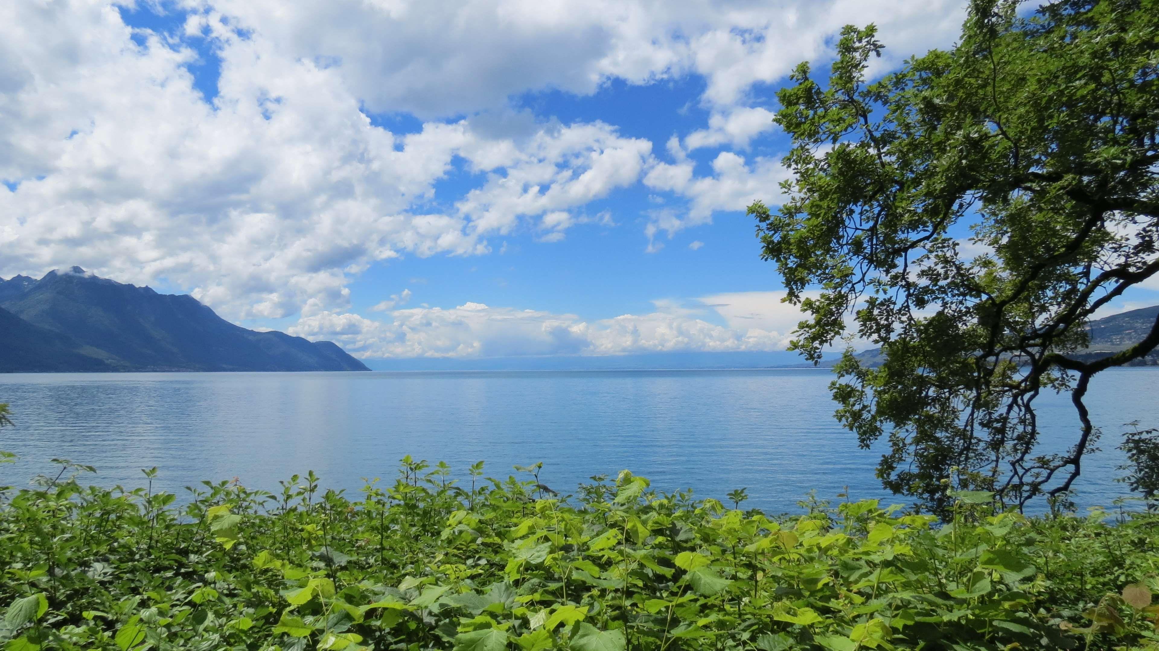 Alps Blue Calm Clouds Europe European Geneva Green Happy Lac Leman Lake Lake Geneva Land Beautiful Vacation Spots Cool Places To Visit Lake Geneva